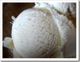 vanilla bean ice cream