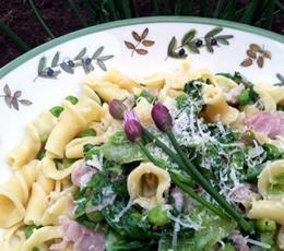 spring prosciutto pasta
