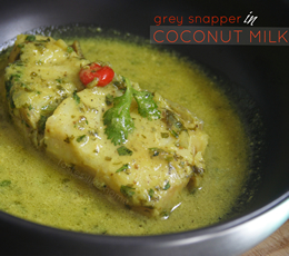 grey snapper in coconut milk